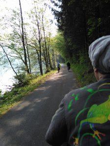 On the Donauradweg