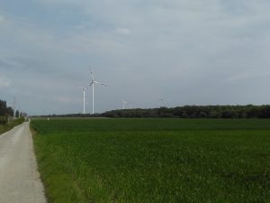 Part of a huge windfarm we pedalled through.... indicating the presence of tairly consistent winds!