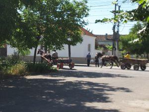 Calafat's main street